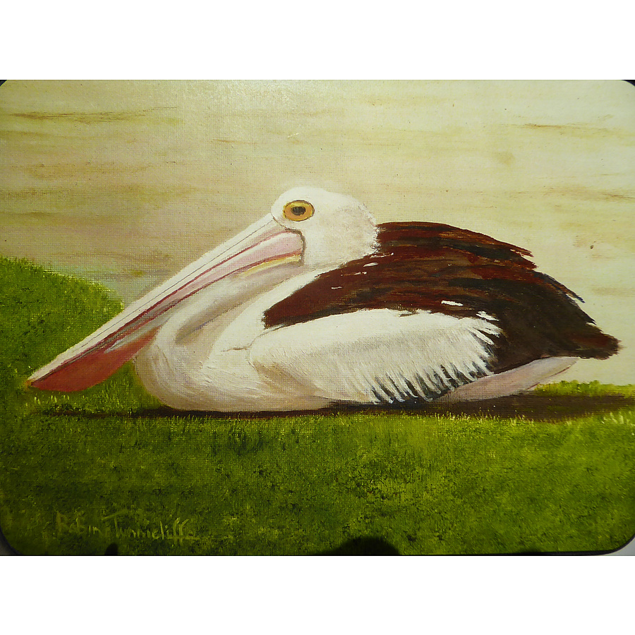 Pelicans Resting - Image 1