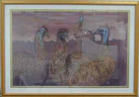 Emus - Gathering of the Clan - Image 1