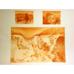 more on Emu's - Large 3 Plate Etching