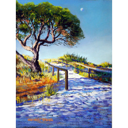 more on Rottnest Pathway