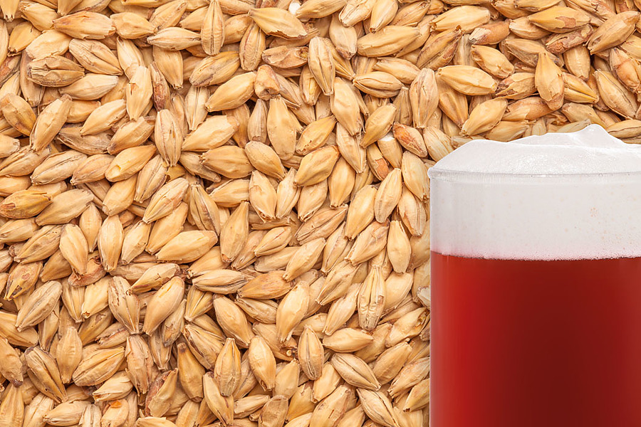 Red X CaraRed Malted Grain per kg - Image 1
