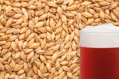 Shepherd Delight Malted Grain per kg - Image 1