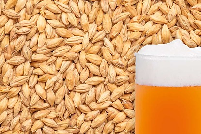 Unmalted Raw Wheat Grain - 25Kg - Image 1