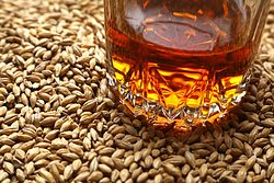 more on Distillers Grain Unsmoked per kg