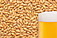 Photo of German Pilsner Malt per kg