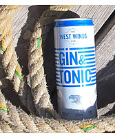 more on West Winds Gin And Tonic Can 250ml
