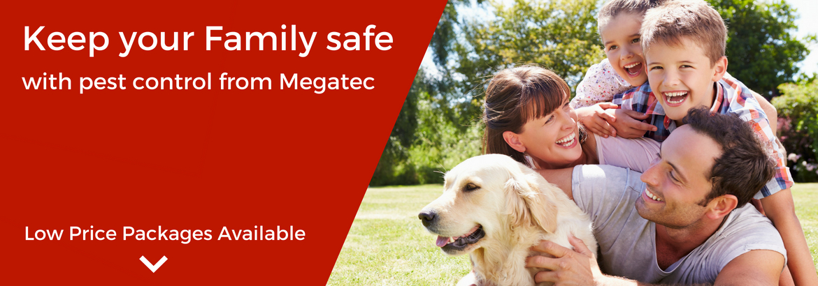 Megatec Pest Control O'Connor Perth