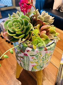more on Sunshine Succulents - cactus print on bowl 18cm in height -
