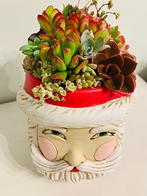 more on Sunshine Succulents- black- pattern- bowl-30cm- with - legs-
