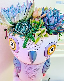more on Sunshine Succulents-Allen Design owl 30cm in height -