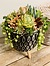 Photo of Sunshine Succulents-- Rustic bowl with wooden base -