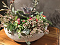 more on Sunshine Succulents - White wok style succulent bowl full of colour