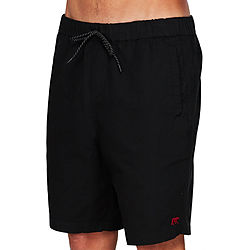 more on Element CA Bear Flint Black Mens Walkshorts